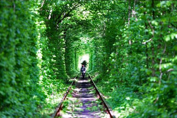 第7天,奔往爱情隧道