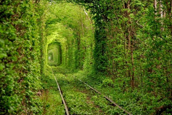 第7天,奔往爱情隧道(来自百度)