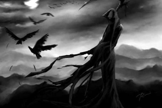 第26天,乌鸦的传说